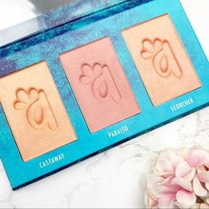 Alamar Cosmetics Blush Trio in Fair Light